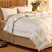 Pacific Coast AllerRest Down Comforter Customer Reviews
