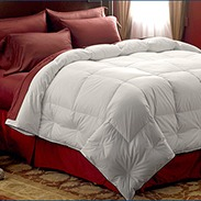 Pacific Coast Extra Warmth Down Comforter Customer Reviews