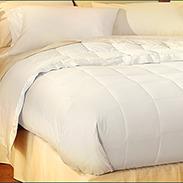 Pacific Coast Hotel Down Blanket Customer Reviews