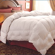 Pacific Coast Lunesse Down Comforter Customer Reviews