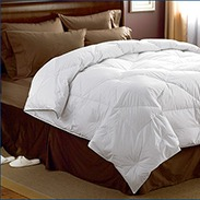 Pacific Coast Premier Down Comforter Customer Reviews