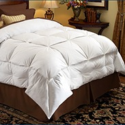 Pacific Coast Stratus Down Comforter Customer Reviews